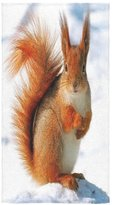 Squirrel Towel New Year/Christmas Gift Cute Squirrel In The Snow Thin Soft Face Towel(One-sided Printing)