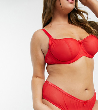 Ivory Rose Lingerie Ivory Rose Curve sheer mesh brief in red