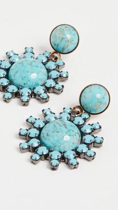 Elizabeth Cole Roscoe Earrings