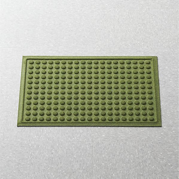 Crate & Barrel Apartment Thirsty DotsTM Green Doormat.