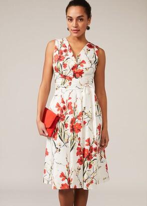 Phase Eight Sofia Floral Cotton Dress