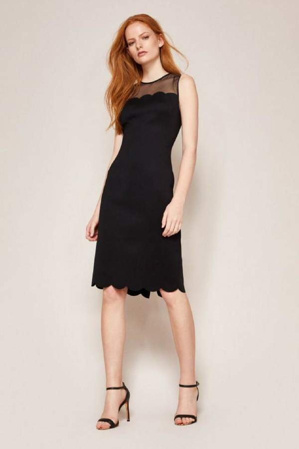 Ted Baker Fitted Midi Dress