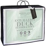 Downland 12cm Anti-Allergy Duck Feather and Down Mattress Topper