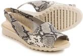 The Flexx Fantazee Sandals - Leather, Mini Wedge Heel (For Women)