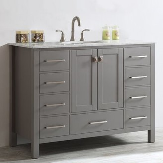 "Beachcrest Home Newtown 48"" Single Bathroom Vanity Set Base Finish: Gray"