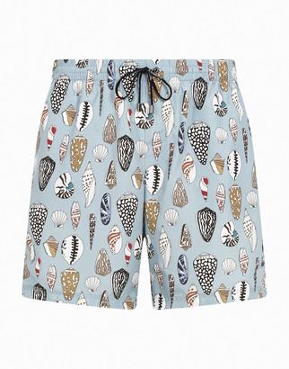 Dolce & Gabbana Medium Swimming Trunks With Shell Print