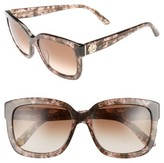 Juicy Couture Women's Black Label 55Mm Square Sunglasses - Havana