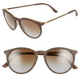 Ray-Ban Women's 53Mm Polarized Round Sunglasses - Brown/ Grey Polar