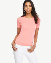 Ann Taylor Extrafine Merino Wool Short Sleeve Sweater