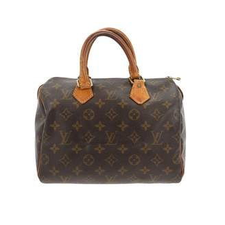 Louis Vuitton Speedy Brown Leather Handbag