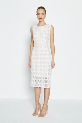 Coast Sleeveless Lace Midi Shift Dress