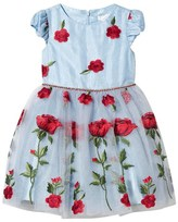 David Charles Ice Blue Embroidered Rose Dress