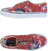 Sperry Low-tops & sneakers - Item 44867043