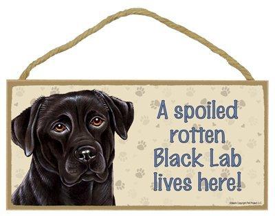 """Breed Black Labrador Retriever- A spoiled """"your favoriate dog lives here! - Door Sign 5'' x 10''"""