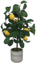 SONOMA Goods for LifeTM Artificial Lemon Tree Table Decor