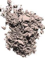 Chantecaille Poudre Délicate Powder