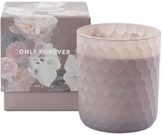 Indigo Scents Only Forever Scented Glass Candle 12 Oz.