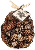 One Kings Lane S/2 Asst of Cinnamon Cones, Natural