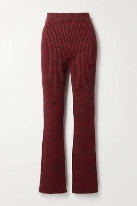 ANNA QUAN Liza Ribbed Cotton Flared Pants - Burgundy