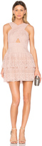 BCBGMAXAZRIA Alissa Dress