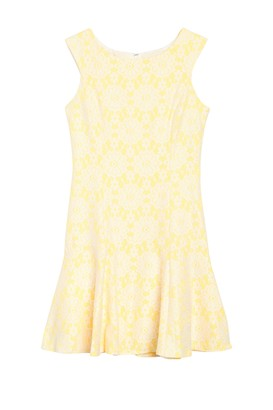 Nanette Lepore Cap Sleeve Paneled Lace Dress