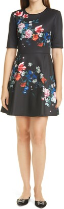 Ted Baker Zalena Floral Fit & Flare Dress