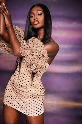 boohoo Polka Dot Organza Ruched Sleeve Mini Dress