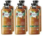 Herbal Essences Biorenew Golden Moringa Oil Smooth Shampoo, 13.5 FL OZ (Pack of 6)
