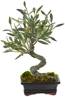 Nearly Natural Mini Olive Artificial Bonsai Tree