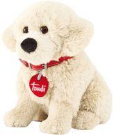 Golden Retriever Trudi Puppy