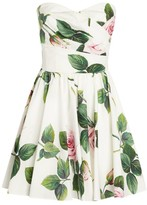 Dolce & Gabbana Tropical Rose Dress