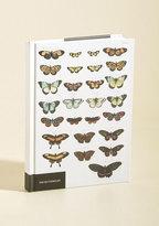 Chronicle Books Genuine Specimen Notebook