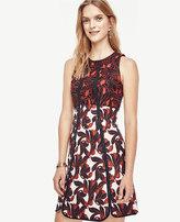 Ann Taylor Petite Vine Lace Jacquard Flare Dress