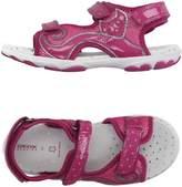 Geox Sandals - Item 11004765