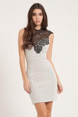 Girls On Film Grey & Black Lace Overlay Bodycon Dress