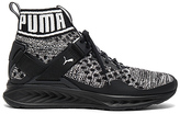 Puma Select Ignite Evoknit in Black. - size 11 (also in )