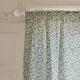 Minted Vintage Charm Curtains