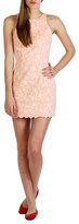 Dolce Vita Bluebell Dress Coral