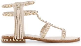 Ash studded glatiator sandals