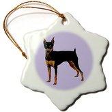 Mini A Ture 3dRose LLC orn_591_1 Dogs Miniature Pinscher - Miniature Pinscher - Ornaments