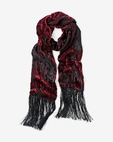 White House Black Market Velvet Burnout Scarf