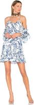 Parker Aidrian Dress