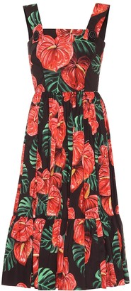 Dolce & Gabbana Floral stretch-cotton midi dress