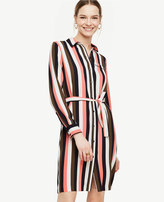 Ann Taylor Petite Stripe Piped Shirtdress