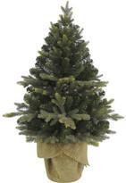 David Jones Tree-91cm Burlap Tree In Bag Plain Green
