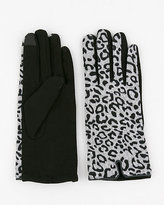 Le Château Leopard Print Wool Blend Gloves