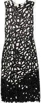 Proenza Schouler Two-tone Glossed Cotton-blend Lace And Crepe Midi Dress - Black