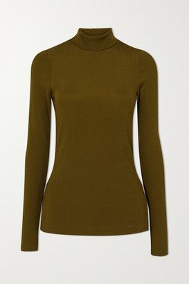 Gold Sign Net Sustain The Rib Knitted Turtleneck Top - Green