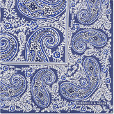 Turnbull & Asser Framed Paisley Silk Pocket Square