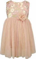 Popatu Embroidered Floral Sleeveless Tulle Dress